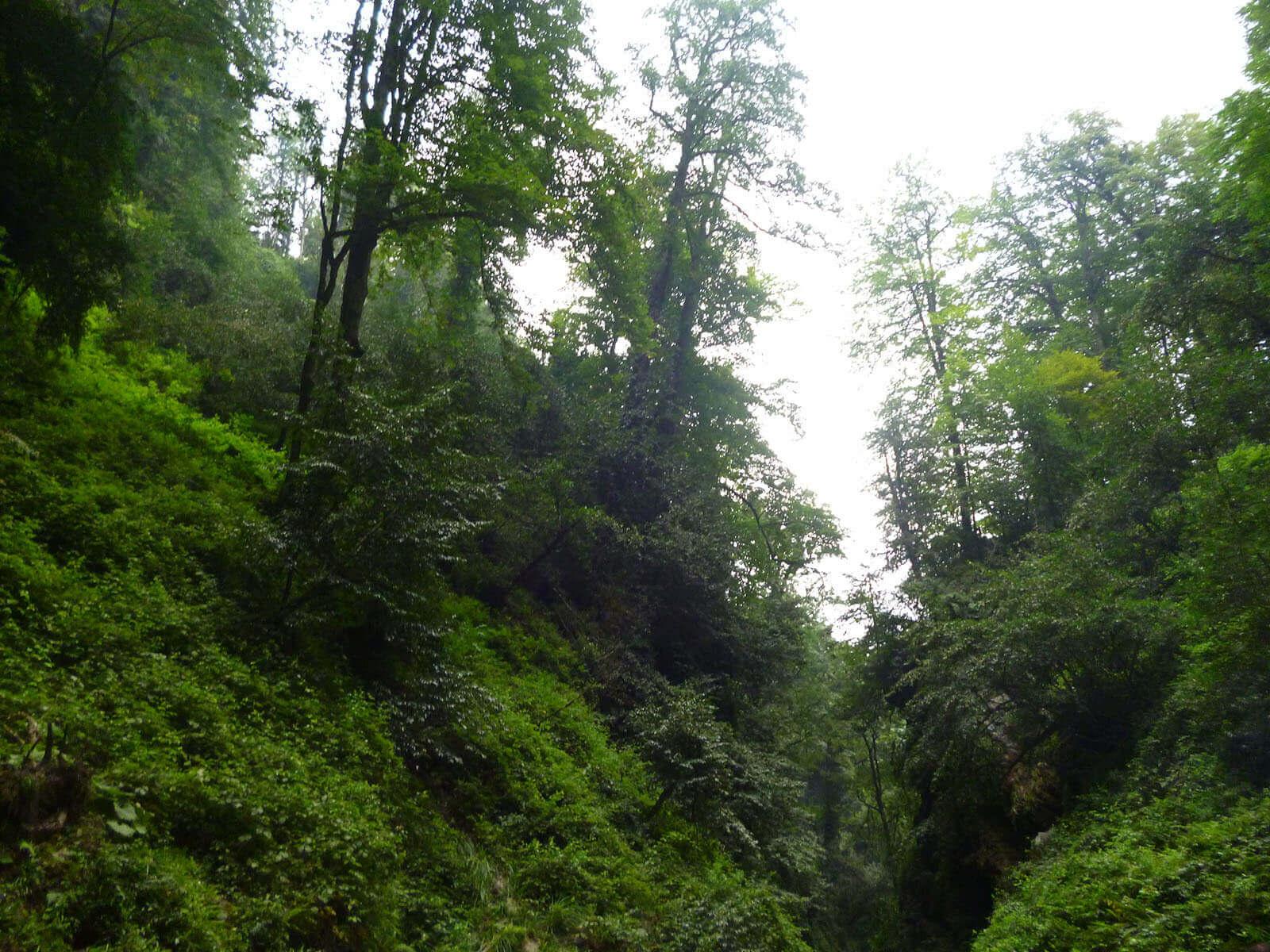 gazou-waterfall (6)